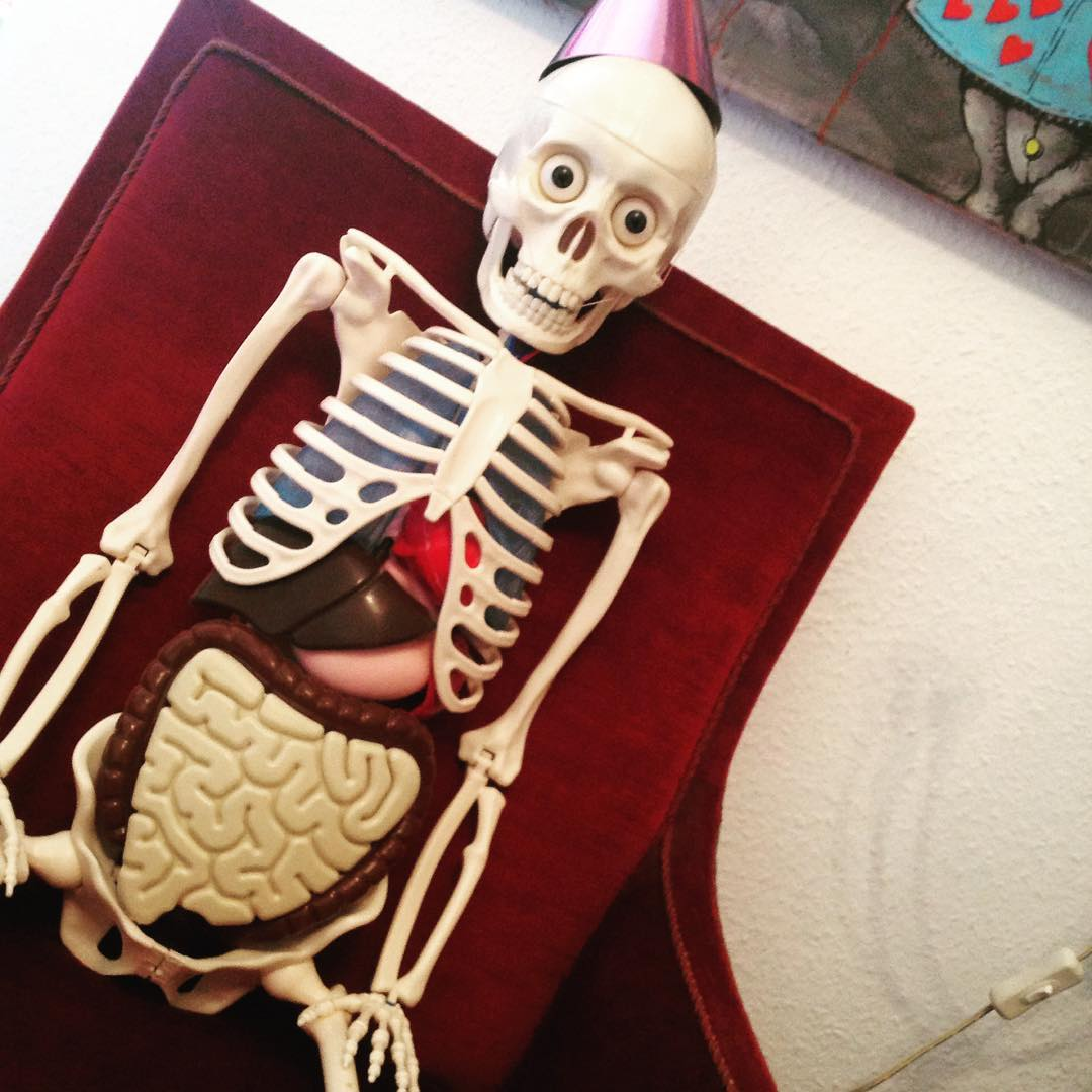 Neue Mitarbeiterin: Skelett Modell mit schönem Darm